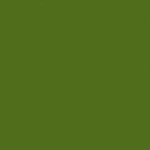 Sklo lak trávově zelený mat